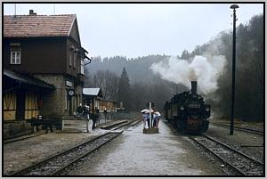 99 5906 in Alexisbad